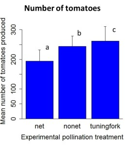 Results2012_numbertomatoes.jpeg