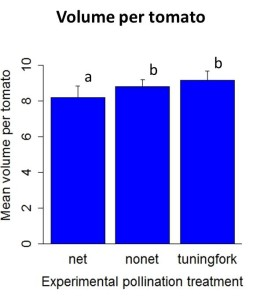 Results2012_volumetomatoes.jpeg